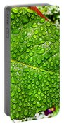 Bejewelled By Rain  Portable Battery Charger