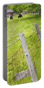 Belted Galloway Cows Farm Rockport Maine Portable Battery Charger