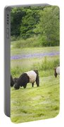 Belted Galloway Cows Pasture Rockport Maine Photograph Portable Battery Charger