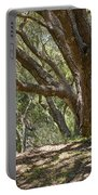 Bench And Tree In Cambria II Portable Battery Charger