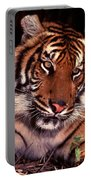 Bengal Tiger In Thought Portable Battery Charger