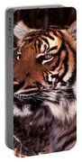 Bengal Tiger Watching Prey Portable Battery Charger