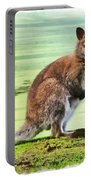 Bennets Wallaby  Portable Battery Charger
