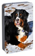 Bernese Mountain Dog Enjoys The Snow And Sunshine  Portable Battery Charger