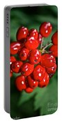 Berry Brilliant Portable Battery Charger