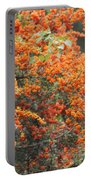 Berry Orange Portable Battery Charger