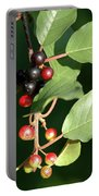 Berry Stages Portable Battery Charger