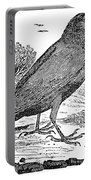 Bewick: Raven Portable Battery Charger