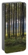 Beyond The Woods Portable Battery Charger