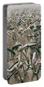 Bicycle Park In Beijing In China Portable Battery Charger