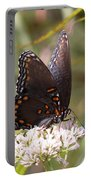 Big Beauty Portable Battery Charger