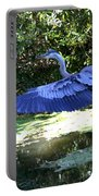 Big Blue In Flight Portable Battery Charger