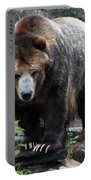 Big Brown Bear Portable Battery Charger