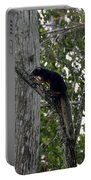 Big Cypress Fox Squirrel Portable Battery Charger by David Lee Thompson