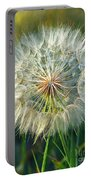 Big Dandelion Seed Portable Battery Charger