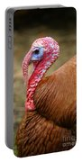 Big Turkey Portable Battery Charger