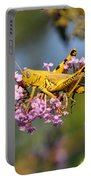 Big Yellow Grasshopper Portable Battery Charger