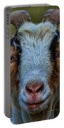Billy Goat Portable Battery Charger by Paul Ward