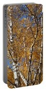 Birch Beauty Portable Battery Charger