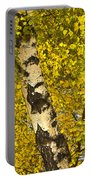 Birch Forest In Finland Portable Battery Charger