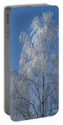 Birch In Frost. Portable Battery Charger