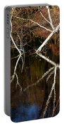 Birch Reflections Portable Battery Charger