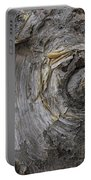 Birch Tree Bark No.0859 Portable Battery Charger