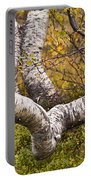 Birch Trees In Autumn Foliage Portable Battery Charger