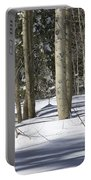Birch Trees In Snow Portable Battery Charger