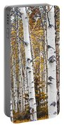 Birch Trees No.0644 Portable Battery Charger