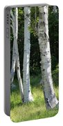 Birches On A Meadow Portable Battery Charger