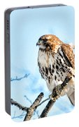 Bird - Red Tail Hawk - Endangered Animal Portable Battery Charger