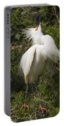 Bird Mating Display - Snowy Egret  Portable Battery Charger