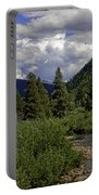 Bird Over Vail 1 Portable Battery Charger