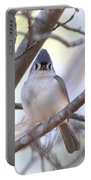 Bird - Tufted Titmouse - Busted Portable Battery Charger