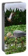 Birding Action At Circle B Bar Reserve Portable Battery Charger