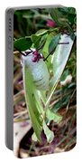 Birds And Bees And Luna Moths Portable Battery Charger