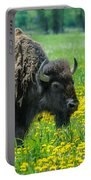 Bison And Friend Portable Battery Charger