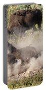 Bison Dust Bath Portable Battery Charger
