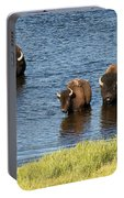 Bison Enjoying The Water Portable Battery Charger