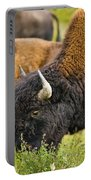 Bison Grazing, Northern British Columbia Portable Battery Charger