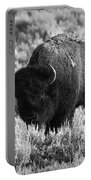 Bison In Black And White Portable Battery Charger