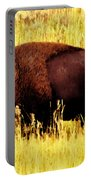 Bison In Field Portable Battery Charger