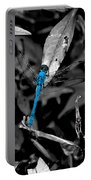 Black And Blue Portable Battery Charger