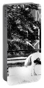 Black And White Clydesdale Grazing Portable Battery Charger