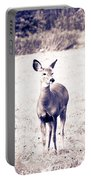 Black And White Deer Portable Battery Charger
