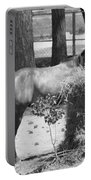 Black And White Hay Horse Portable Battery Charger