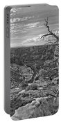 Black And White Image Of Tree Portable Battery Charger