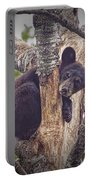 Black Bear Cub No 3224 Portable Battery Charger