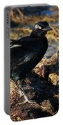 Black Bird With Yellow Eyes Portable Battery Charger